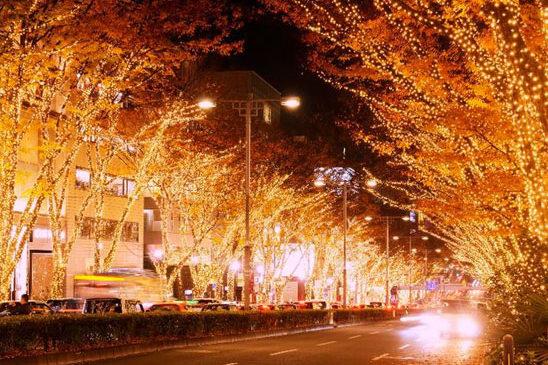 A Tokyo si accende la magia delle feste