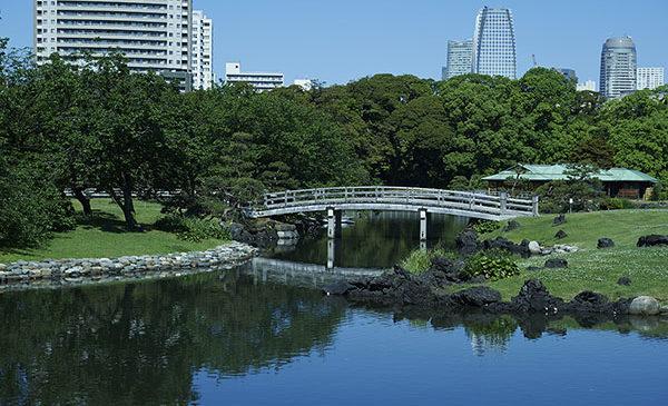 Tokyo: la nuova guida digitale per scoprire le aree verdi della città
