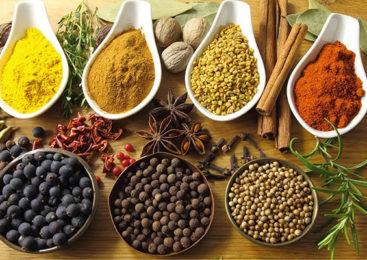 Benessere: Ayurveda e alimentazione