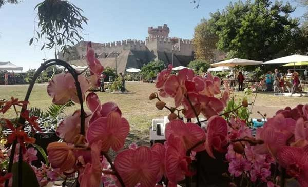 Castello di Santa Severa, tra visite guidate e terme in fiore