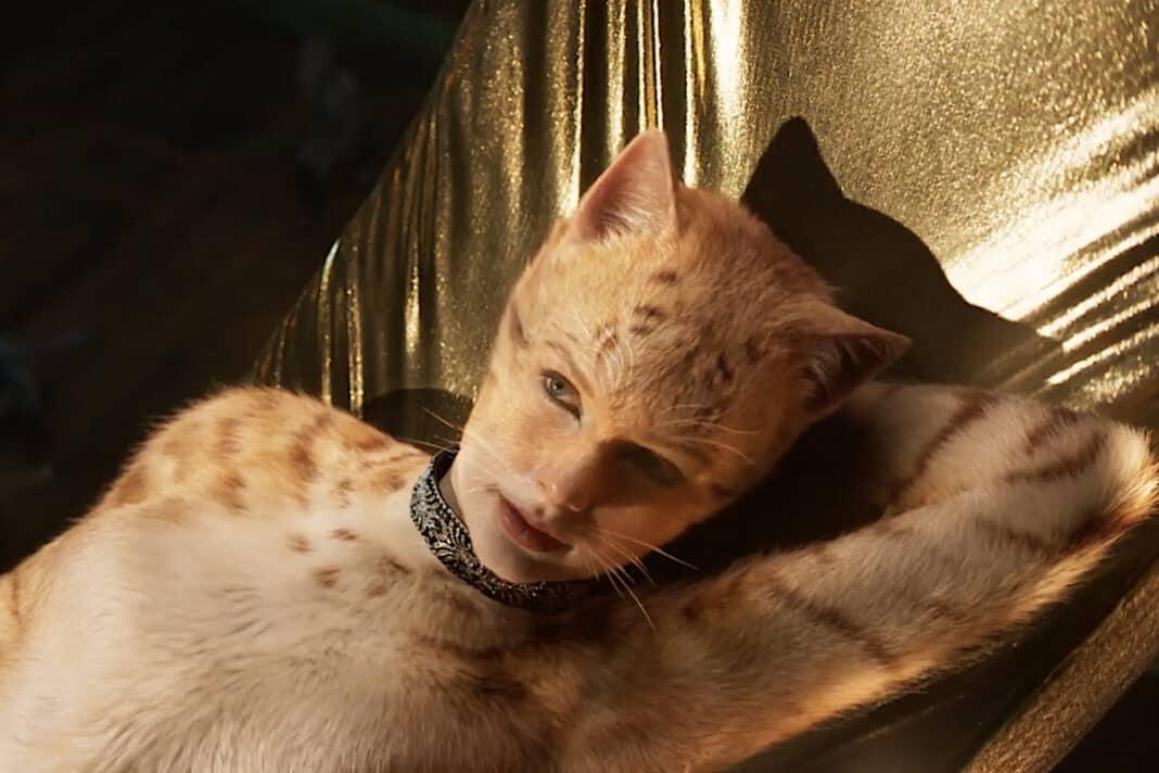 Cinema-Cats