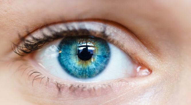 Quali effetti ha lo smart working sui nostri occhi?
