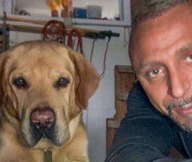Pam – Il cane giramondo dell'attore più conteso di Hollywood