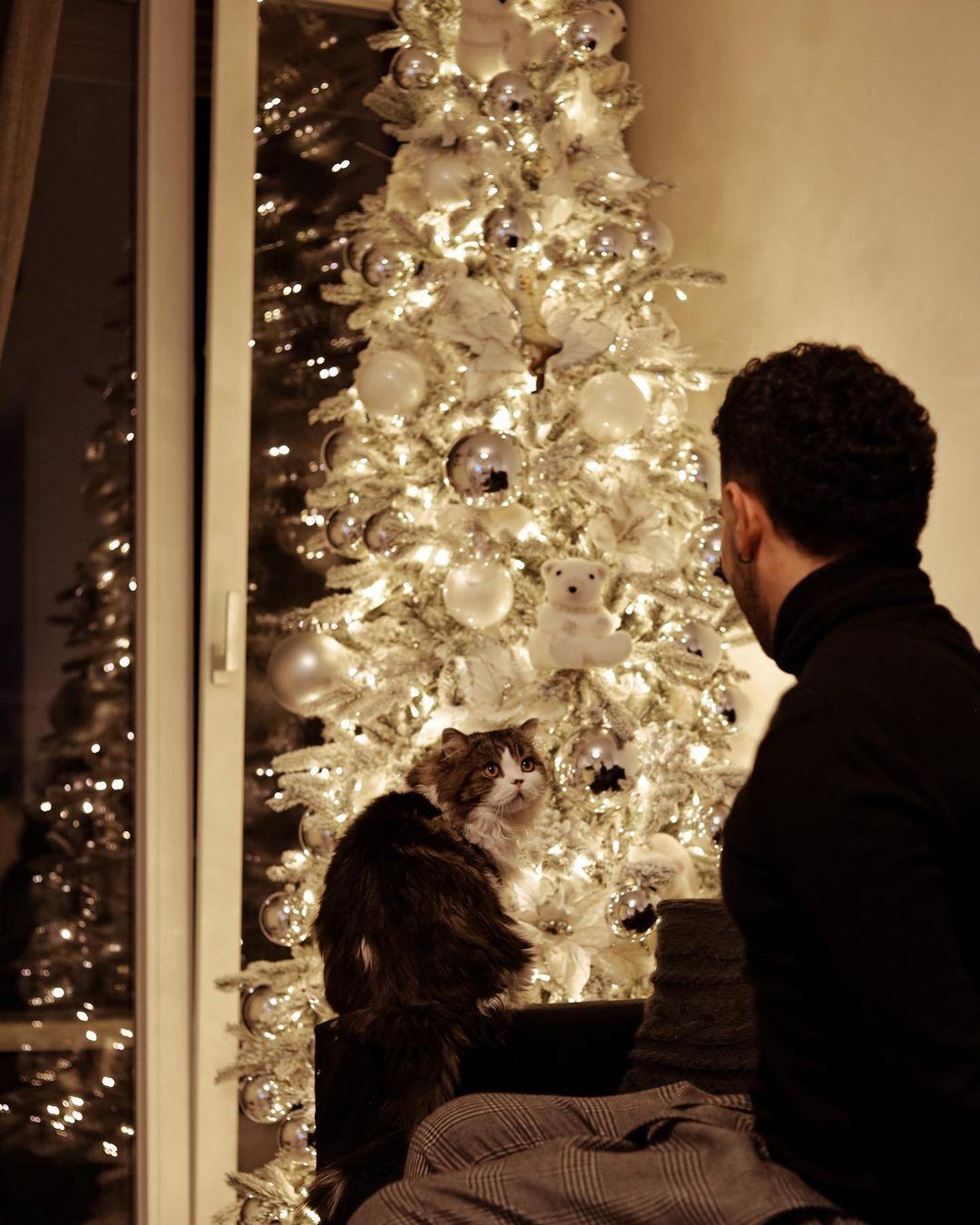Natale- L'ultima tendenza è il Christmas Renting