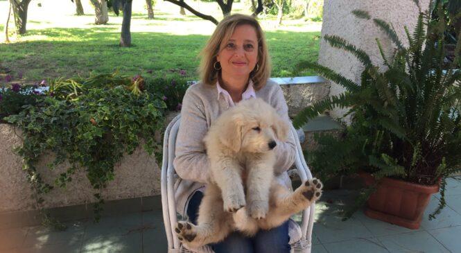 Antonietta Micali- Dammi una penna e ti regalerò parole