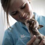 AniCura- Boom nelle adozioni di cuccioli