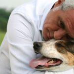 L'Italia vip che ama gli animali: da Giorgio Panariello a Wertmuller e Degrenet per LNDC Animal Protection