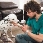 Epicura- I consigli dei veterinari per proteggere i nostri amici a 4 zampe!