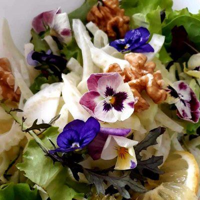 Aggiungiamo fiori nelle nostre insalate!