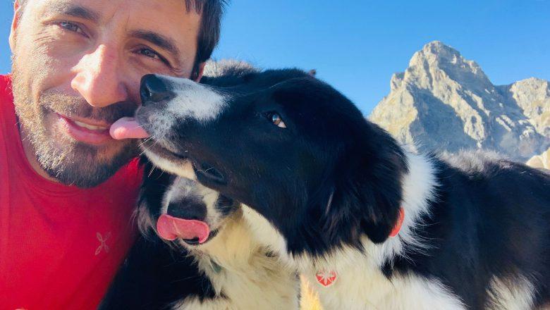 Prima di educare il cane, va istruito il suo padrone!