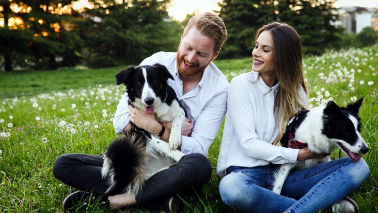 Parte il crowdfunding di MeetMyPet, il primo social network dedicato a cani, gatti e proprietari