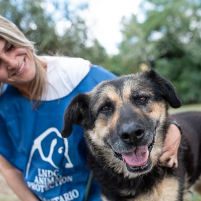 LNDC- Fotografi uniti per aumentare le adozioni nei canili